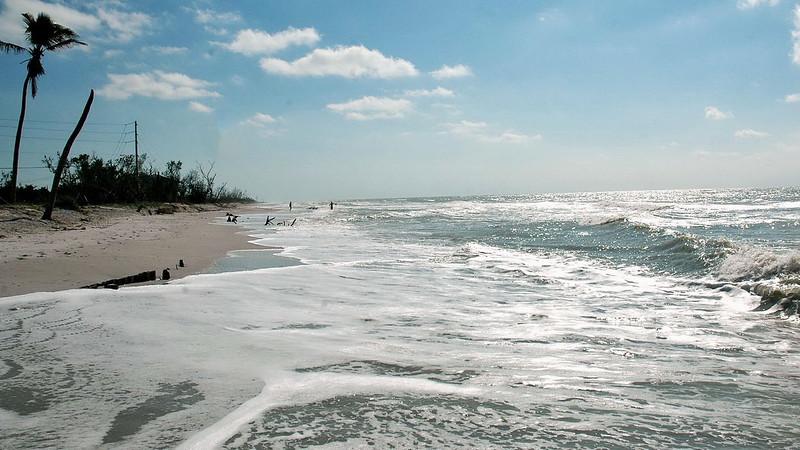 Florida 2005 10.JPG