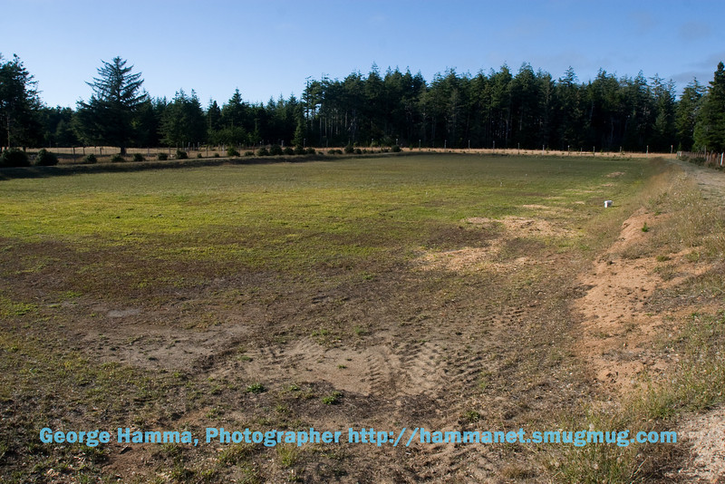 This bog has been mowed and will have to be replanted.