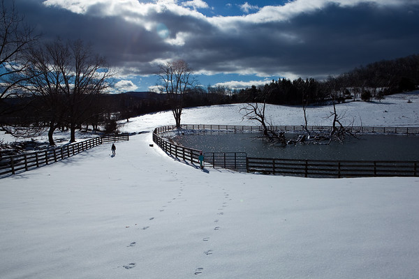 Winter 2012 in Virginia