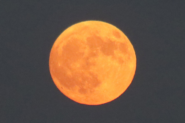August 25, 2018:  A beautiful moon .  .  .