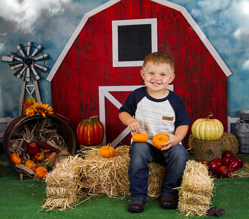 Rankin Harvest Mini 2019