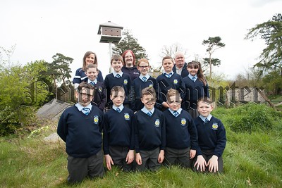 Pupils from St Peter's Cloughreagh are pictured at the newly installed Swift Tower on Derrymore Estate. Also pictured is their Teacher Christina Carolan, Alison Henderson and Barney O'Brien. R1519001