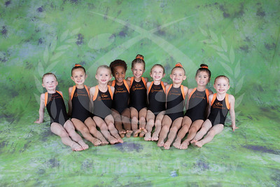Team 2017 - JO Girls Level 2