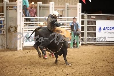 Bull Riding Tuesday Night