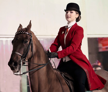 SPRING HORSE SHOW - OPEN CLASSES