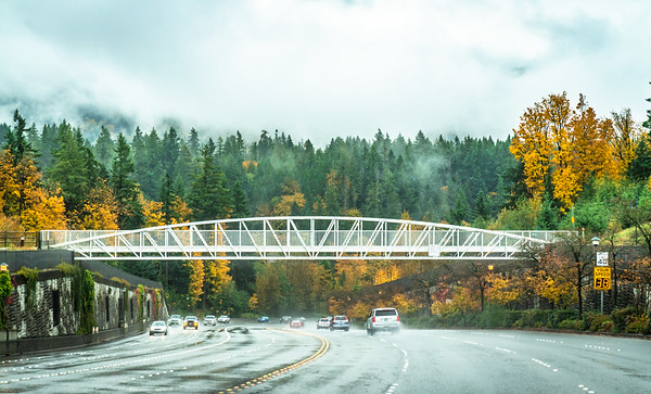 Issaquah Highlands, Grand Ridge, streets & Parks