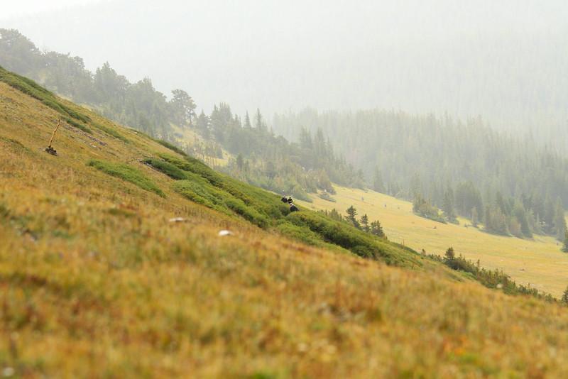 Breck Crest-17.jpg