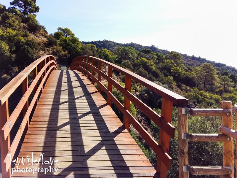 135_walks_with-monty_2016-113206.jpg