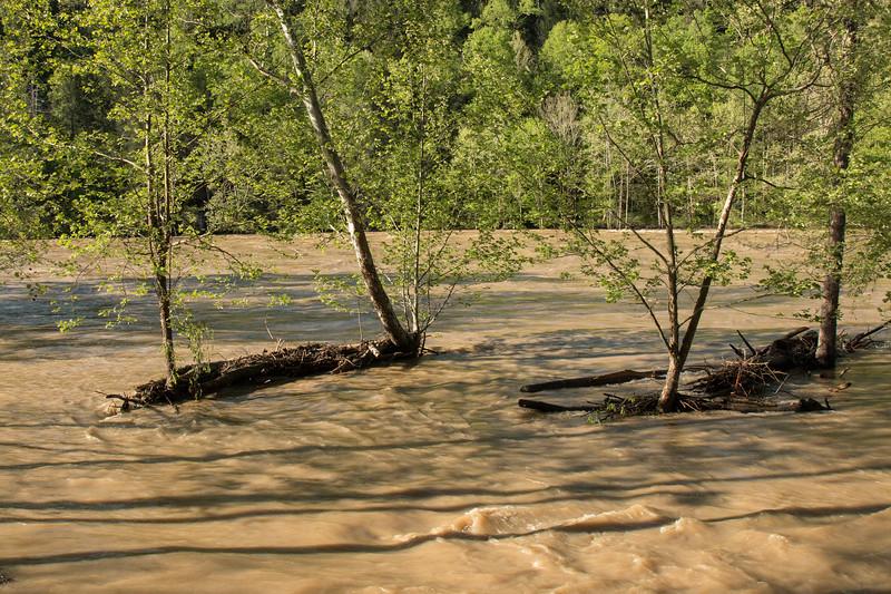 Cumberland Flood 042517-4.jpg