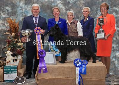 2018 BPCA National Win Photos