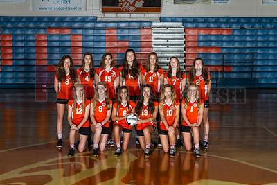 Girls Varsity Volleyball - 2017