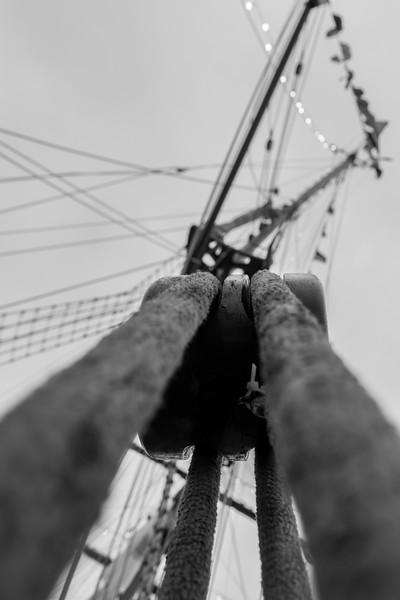 Sail Boston-0053.jpg