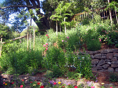 Greenbrae Garden