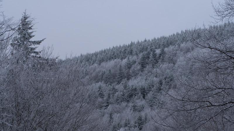 Snowmaking 1920-04696.jpg