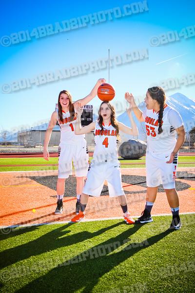 DHS Girls Varsity Team Photos 2015