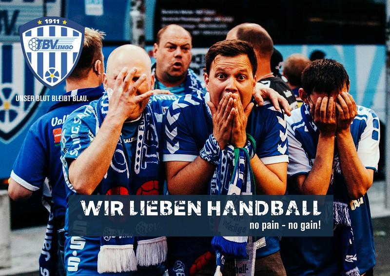 Wir lieben Handball TBV 2018.jpg