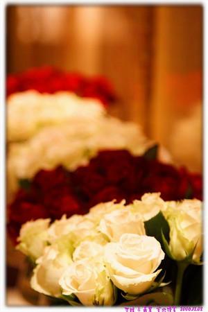 20061202 世維嘉慧婚宴