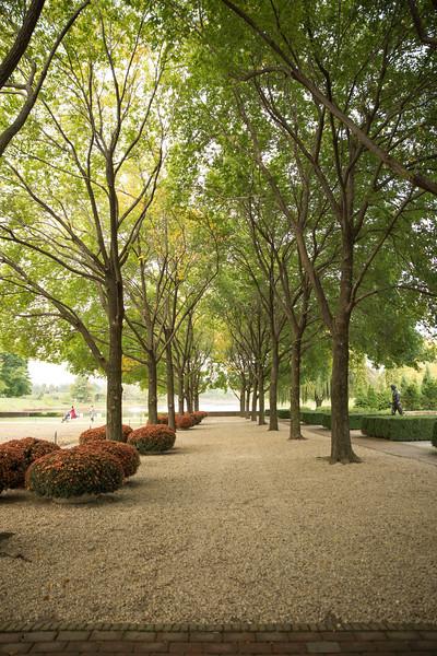 Chicago Botanic Garden 045.jpg