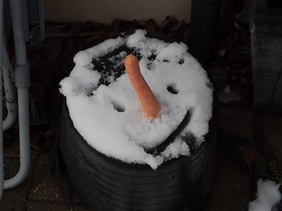 20190202 Snowman
