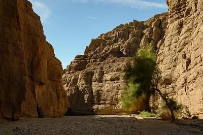 Mecca Hills Wilderness Area