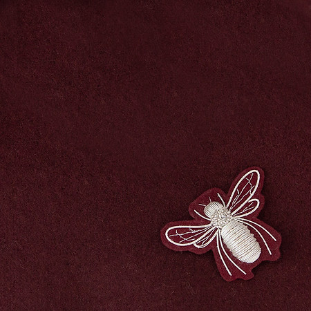 BY VANJA JOCIC INSECTS
