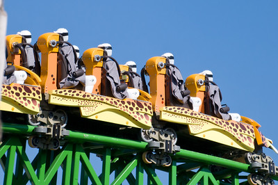 Busch Gardens - Dummies on a coaster - Cheetah Hunt Coaster - 2011-04