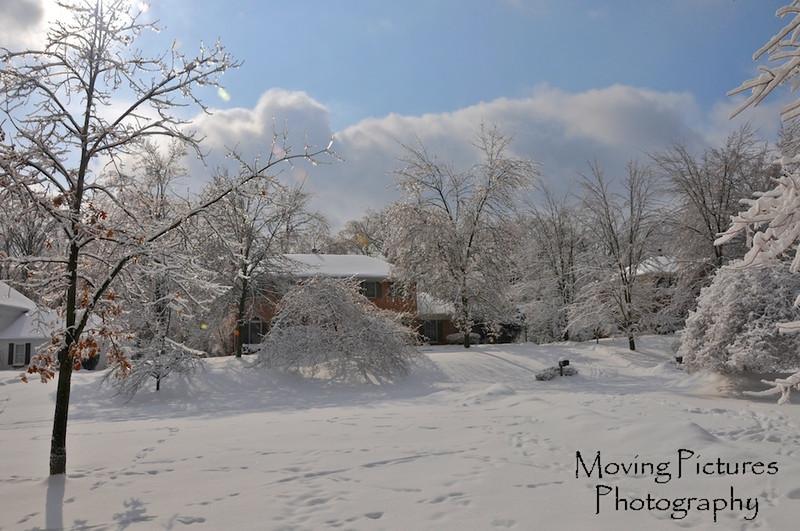 Yard, Winter