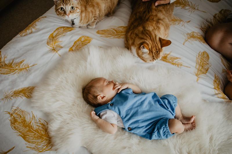 bash-newborn-13.jpg