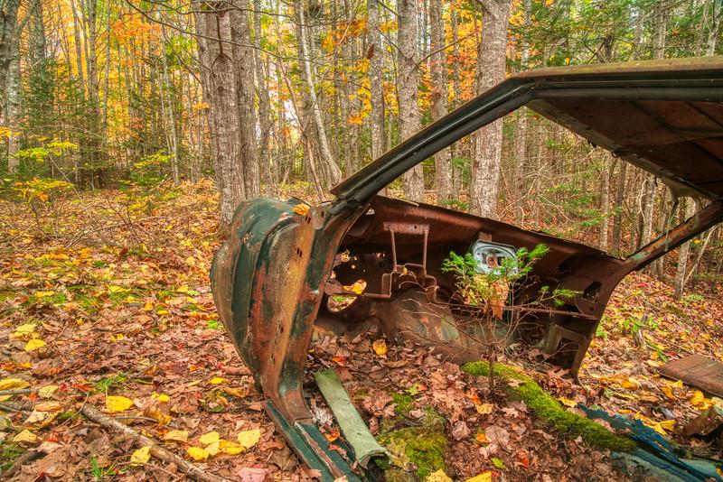 Maine Fall 2019-2.jpg