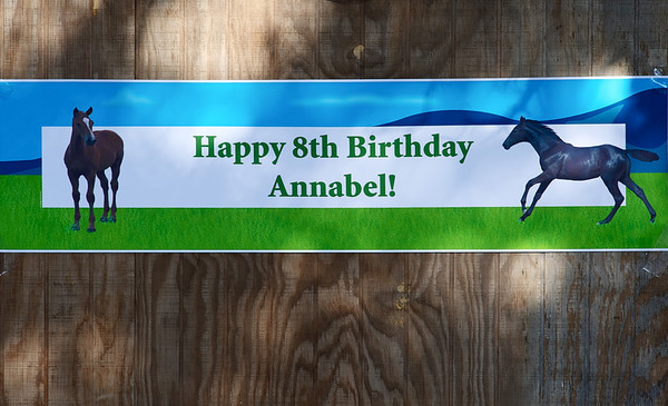 Annabel Turns 8