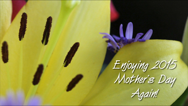 2015 Mother's Day Flowers html5.mp4