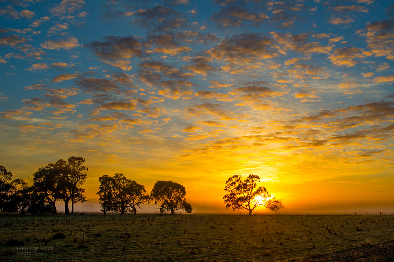 Hay, NSW, Aug 2012.jpg