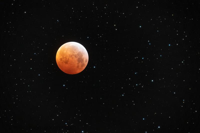Lunar Eclipse 2019 - (c) Panagiotis Xipteras.jpg