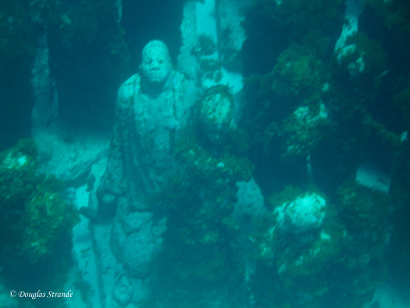 Underwater statues, placed to form an artificial reef at National Marine Park.  Most are covered with vegetation so the details are hard to see.