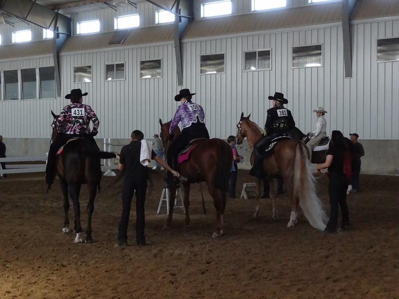 Country Pleasure riders from other stables getting ready to compete.