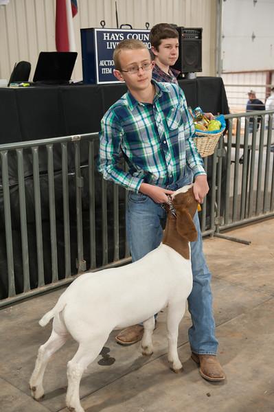 Hays County Show-9793.jpg