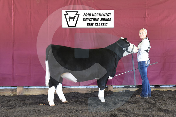 2018 Northwest Keystone Junior Beef Classic