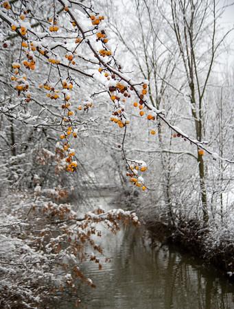 Snow_dec192020