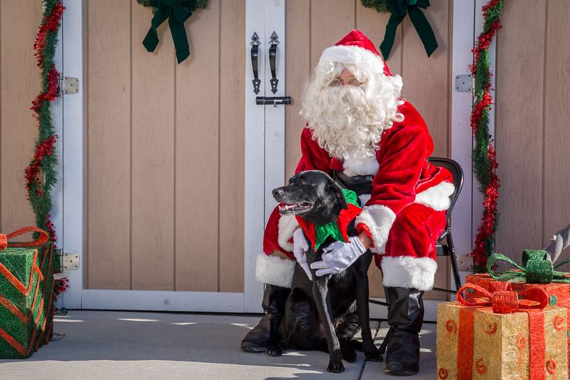 Pet Pictures With Santa-76.jpg