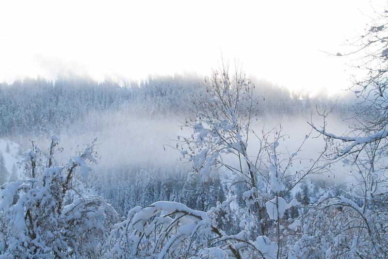 winter 2015-9796.jpg