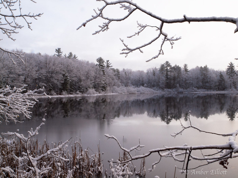 First Snow Reflection.jpg