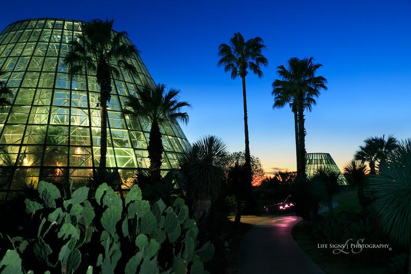 SA Botanical Gardens - 01.jpg