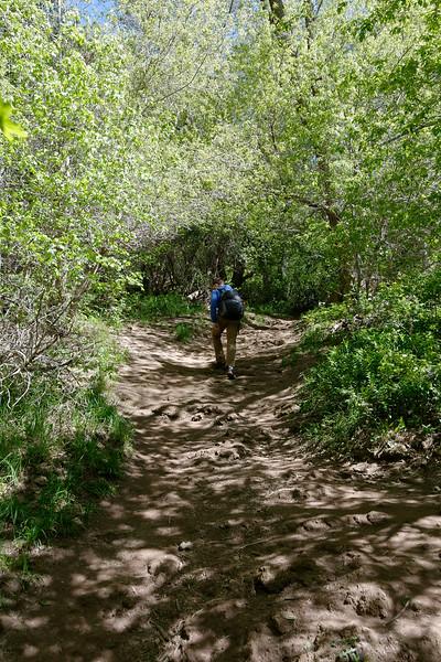 Gandeur Peak Trail (5).jpg