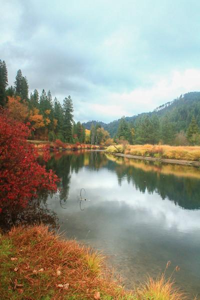 fall 2019 st maries river-1655.jpg