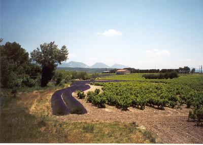 Route to Mediterranean Sea