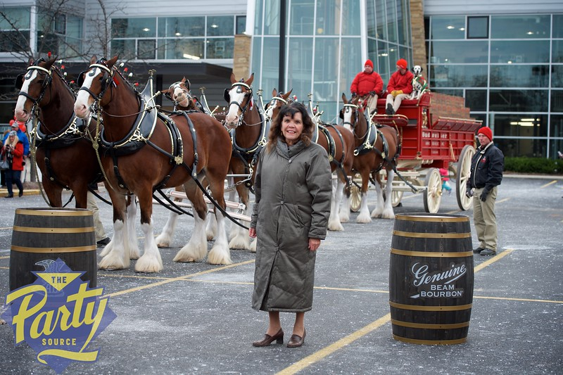 Clydesdale Portraits 15.jpg
