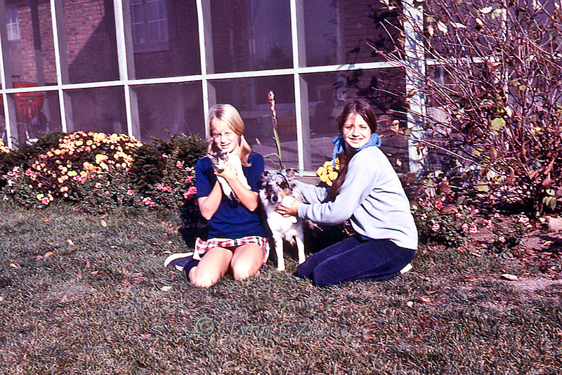 Joy, Mary Palmer & Junoca November 1, 1971
