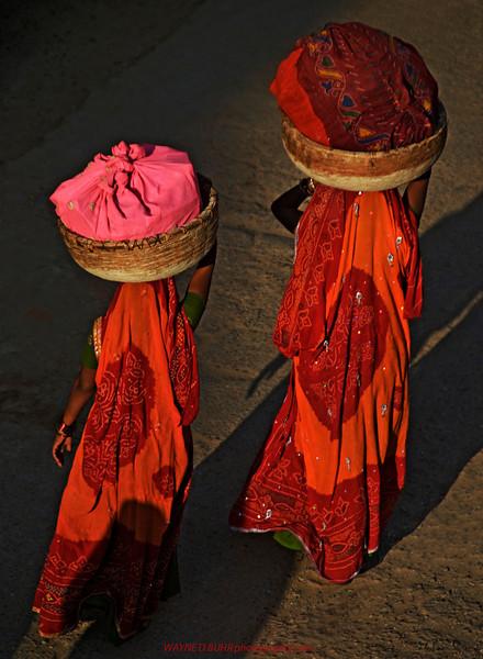 India2010-0204A-438A.jpg