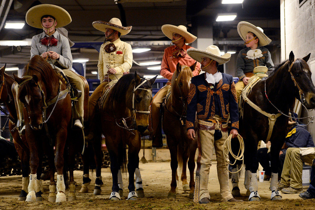 . Rancheros sit on their horses before taking the arena during National Western Stock Show\'s Mexican Rodeo Extravaganza at the Denver Coliseum on Sunday, Jan. 13, 2013. AAron Ontiveroz, The Denver Post