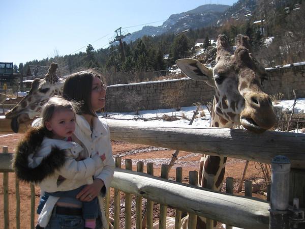 Cheyenne Mountain Zoo - March 3, 2010